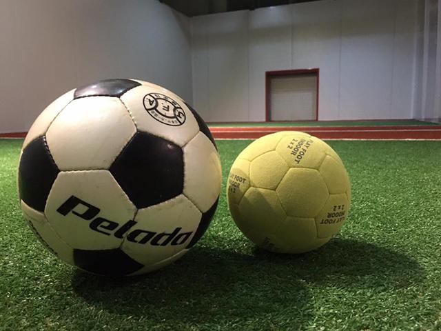 ボールの比較